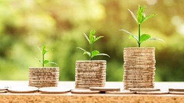 Налог на прибыль организаций