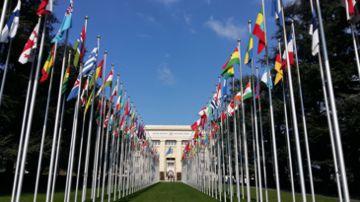 Регистрация представительств и филиалов иностранных и международных организаций