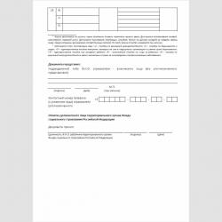 """Форма """"Опись заявлений и документов, необходимых для назначения и выплаты застрахованным лицам соответствующих видов пособий"""". Стр. 3"""