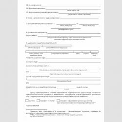 """Форма """"Заявление о регистрации в качестве страхователя физического лица"""". Стр. 2"""